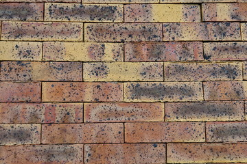 Mur de briques  jaune rouge noir