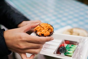 Close up fresh raw sea urchin, Uni or shabby or sashimi ingredients, Japanese style