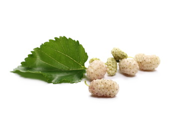 White mulberry fruit with leaves and isolated on white background