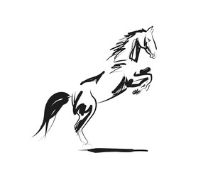 Vector ink sketch of a horse