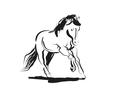 Vector ink sketch of a running horse