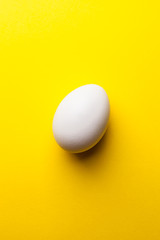 white egg on a yellow background