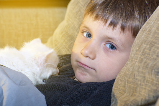 Young and cheerful boy with a white cat on the couch watching the camera