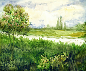 Watercolor landscape. Young tree in meadow near river