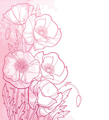 Vector corner bouquet with outline Poppy flower, bud and leaves in pink on the pastel pink textured background. Ornate poppies in contour style for summer design. Symbol of Remembrance Day.
