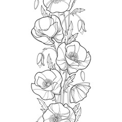 Vector seamless pattern with outline Poppy flower, bud and leaves in black on the white background. Vertical monochrome floral border with ornate contour poppies for summer design or coloring book.