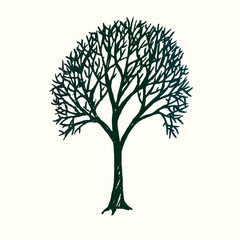 Tree silhouette, hand drawn doodle sketch, black and white vector illustration
