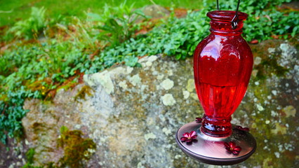 Red Glass Latern