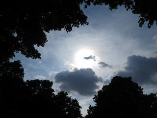 cielo con sol anocheciendo