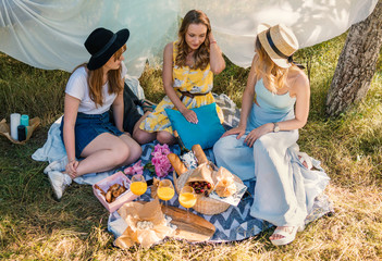 Group of girls friends making picnic outdoor. They sit at the lawn