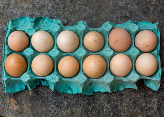 Ranch organic unwashed eggs on a rock in blue carton