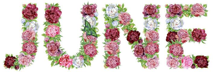 Word JUNE of watercolor flowers
