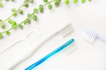 歯、歯ブラシ、歯科