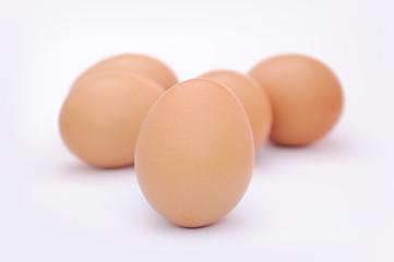 Huevos sanos y limpios