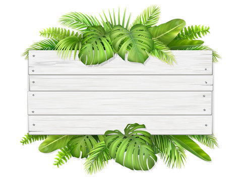 Trendy tropical and summer leaves. Wooden sign with place for text. Illustration for design with exotic plant.