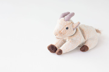 Cute goat  lay down with happy feel on white background