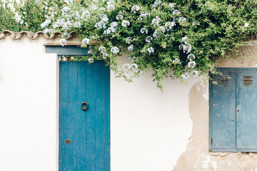 House white facade wall with flowers