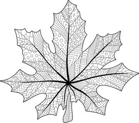 Coloring book page with decorative maple leaf on white background