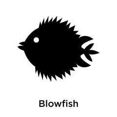 Blowfish icon vector sign and symbol isolated on white background, Blowfish logo concept