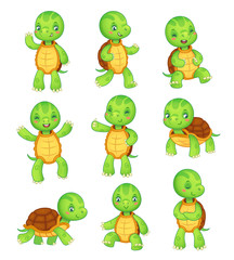Cartoon turtle. Cute kids turtles, wild animals character set. Tortoise characters vector animal illustration collection