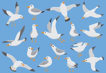 Atlantic white seabird fly at sky. Beach seagull at quay. Sea birds, gull cartoon vector illustration