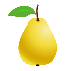 Fresh Pears. Fruit pear on a white background. Vector illustration