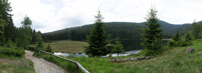 Bavarian Forest - Panorama