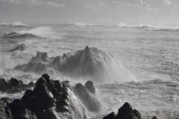 Northern portuguese rocky coast