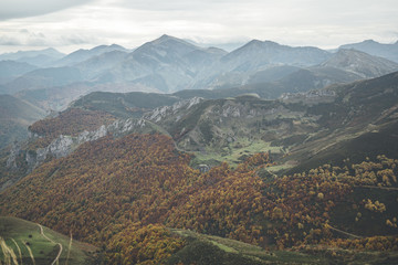 Scenic lansdcape of beech forest in autumn in Picos de Europa National Park, Spain