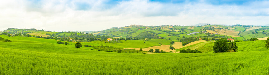 Panorama of Rural Landscape at summer fields in Italian province of Ancona, Italy