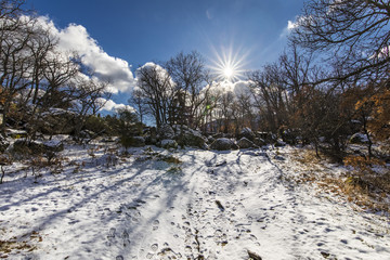 """The winter comes and the snow covers the slopes of the """"Herreria"""" forest at El Escorial, Madrid, Spain"""