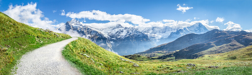 Fotobehang Pistache Schweizer Alpen Panorama im Sommer