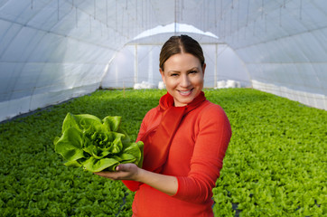 Happy beautiful young woman standing in green house and holding lettuce