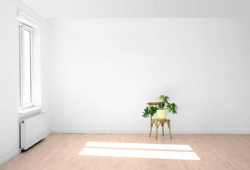 Living room interior with window and houseplant on chair