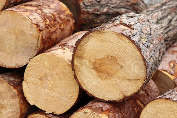 Close-up image of the piles of firewood.
