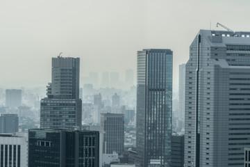 モヤに包まれる高層ビル群 High-rise building in Tokyo
