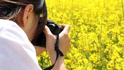 The woman is taking pictures at the rape flower festival.