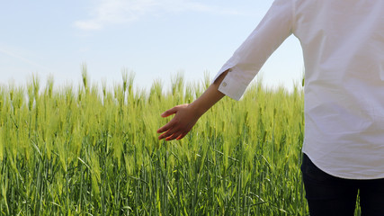 Spring skies and green barley field views. The back side of a woman wearing a white shirt and jeans.