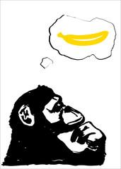 Monkey thinking of banana, Animal abstract background on white background, Vector illustrator.
