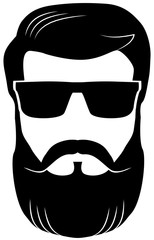 Bearded man wearing shades vector image