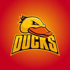 Modern professional logo for sport team. Duck mascot. Ducks, vector symbol on a dark background.