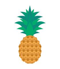 pineapple isolated on white background flat illustration