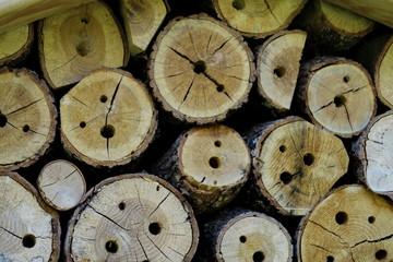 Morceaux de bois percés pour abriter les abeilles