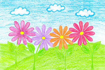 Colorful flowers. Author's pencils drawing, Summer motif wallpaper