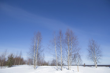 雪景色と青空 フィンランド ロバニエミ