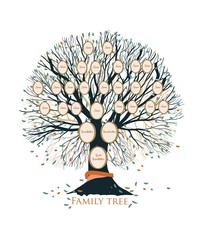 Family tree or genealogical chart template with branches and round portrait frames isolated on white background. Representation of links between relatives and their ancestors. Vector illustration.