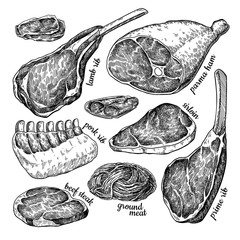 Raw meat set vector drawing. Hand drawn beef steak, pork ham, lamb rib, minced chicken forcemeat.