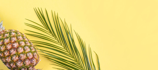 Tropical fruit, and a palm branch on a yellow background. Free space for text. Long format, banner. Flat lay, copy space.
