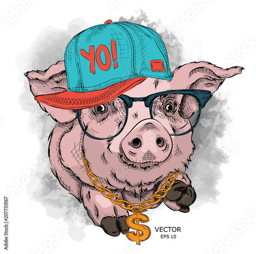 A Painted Funny Pig With Glasses And A Hip Hop Cap Vector