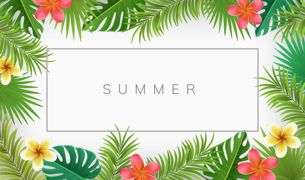 Summer frame with exotic flowers and palm leaves. Vector illustration for tropical frames and backgrounds